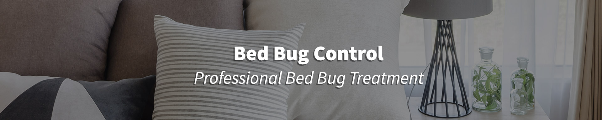 Bed Bug Treatment in Cornelia, GA, Anderson, SC & Greenville, SC