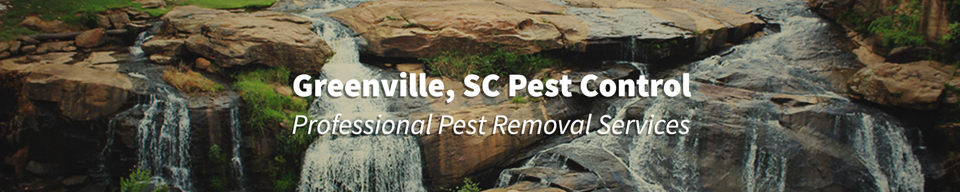 Pest Control Greenville, South Carolina