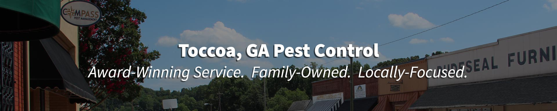 Pest Control in Toccoa, Georgia