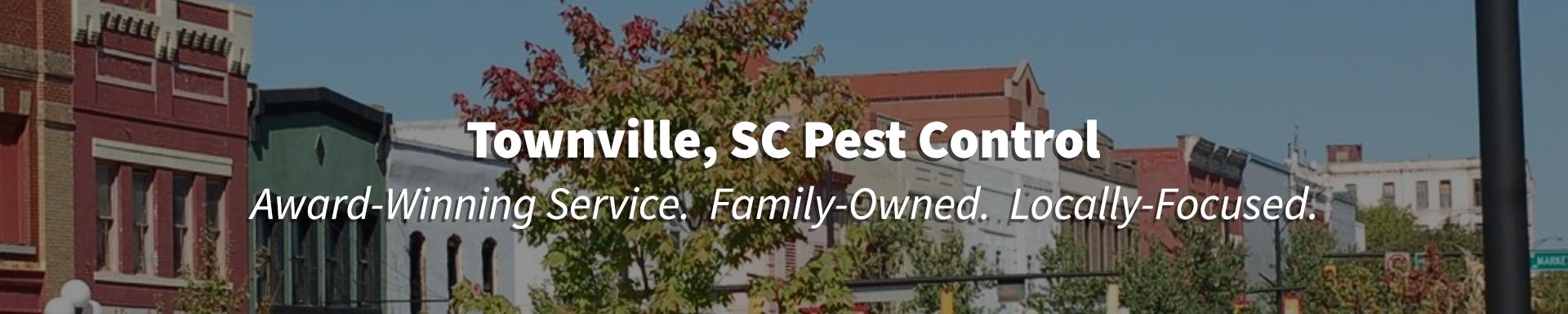 Pest Control in Townville, South Carolina